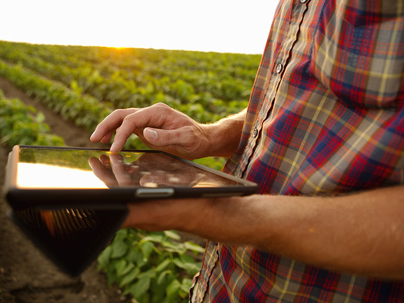 Farmer Tablet